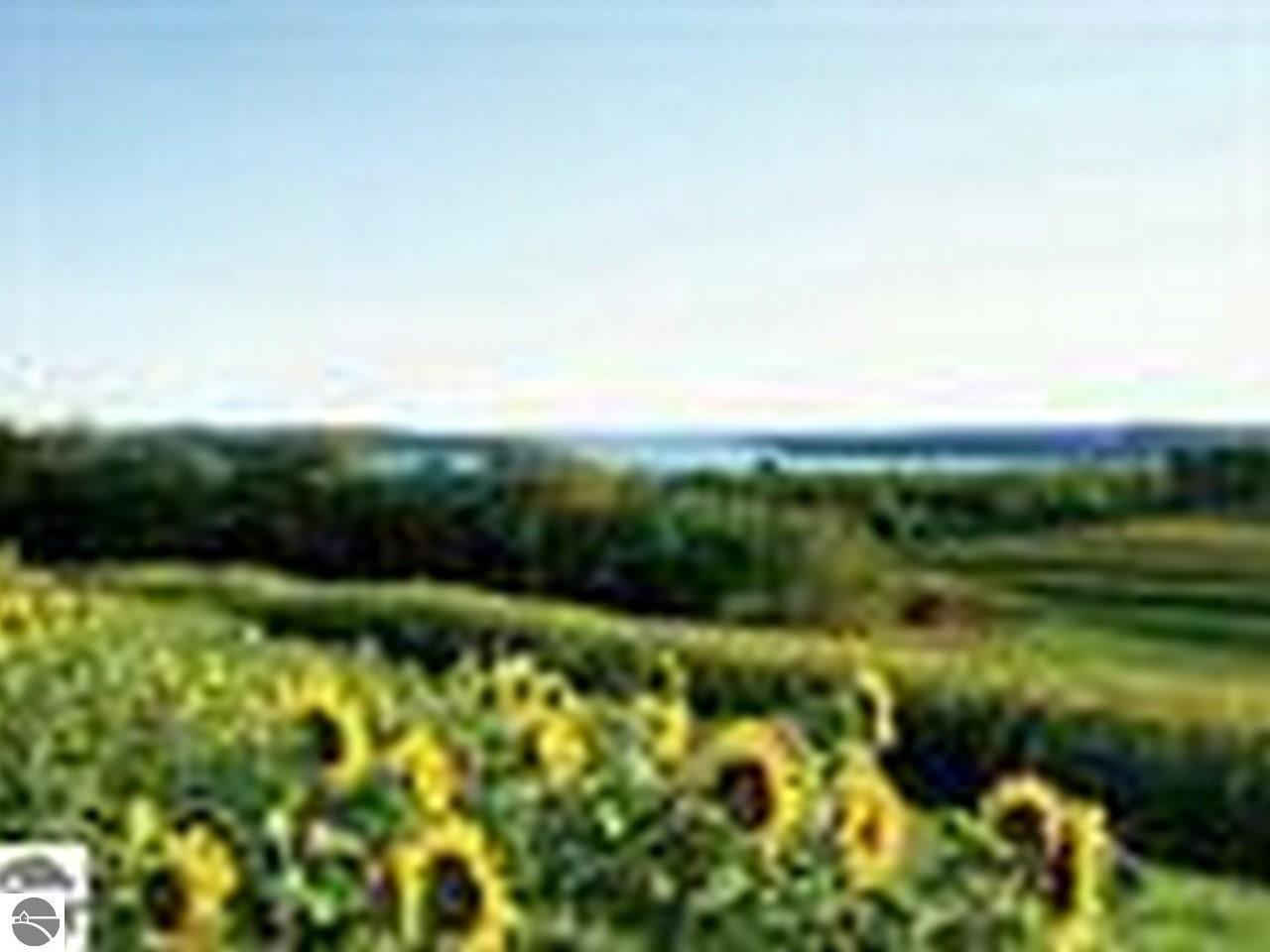 4811 E Water View Dr, Lake Leelanau, MI 49653, Lake Leelanau, Michigan 49653