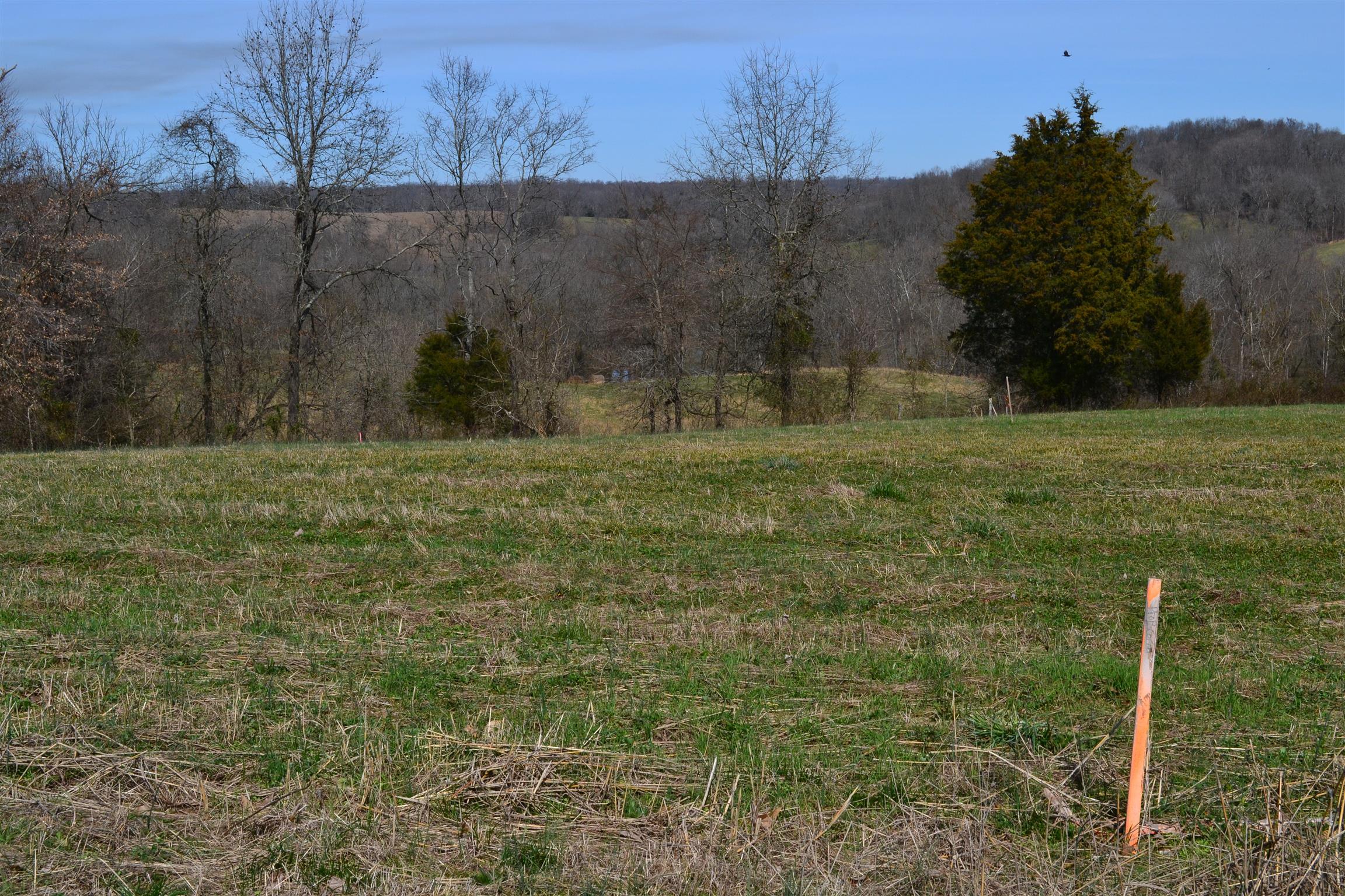 Rawlings Rd, Woodlawn, TN 37191, Woodlawn, Tennessee 37191